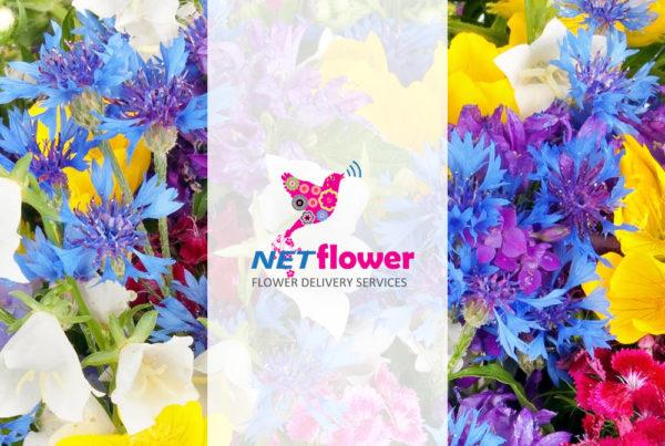 netflower